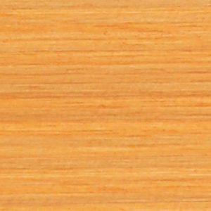 T0060 Pínia